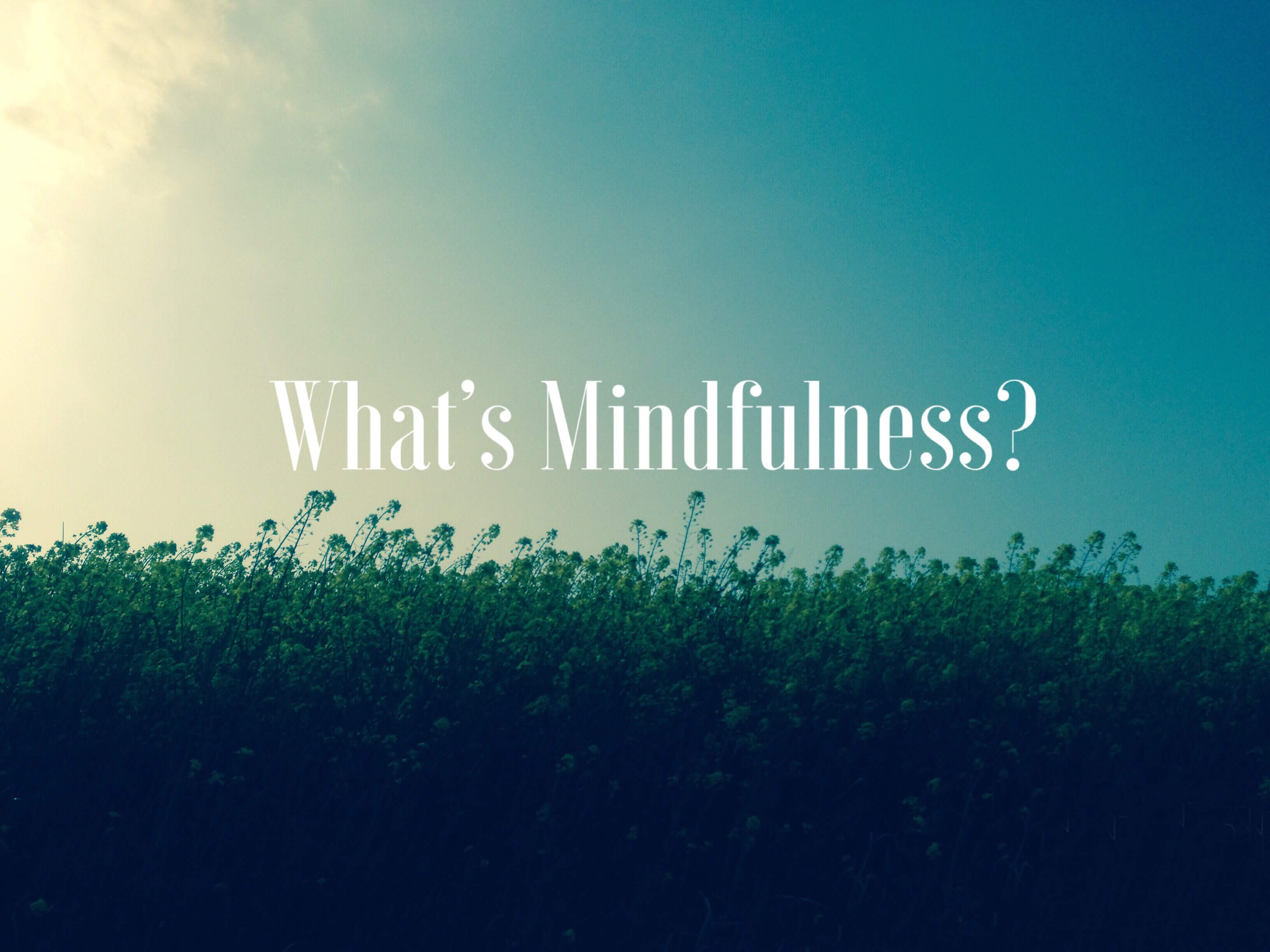 What's Mindfulness?